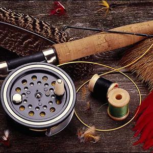 Охотничьи и рыболовные магазины Марево